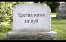 Каменщиков Олег   Москва   8