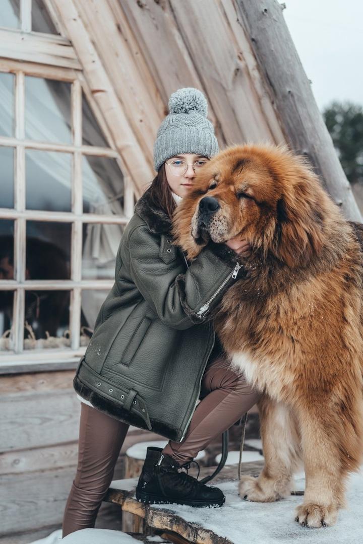 фото из альбома Элины Бицоевой №13