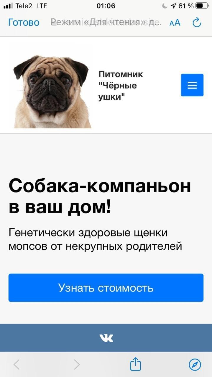 Турбо-страницы Яндекса: пошаговое руководство, изображение №11