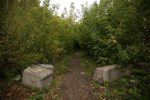 Парк в пойме Каменки планируют благоустроить в следующем ...