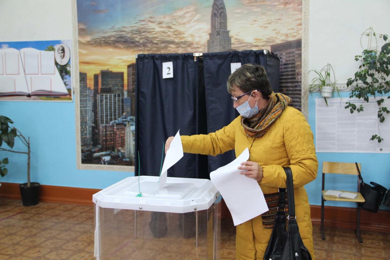 Стали известны предварительные итоги выборов в Петровском районе депутатов Госдумы и горсовета