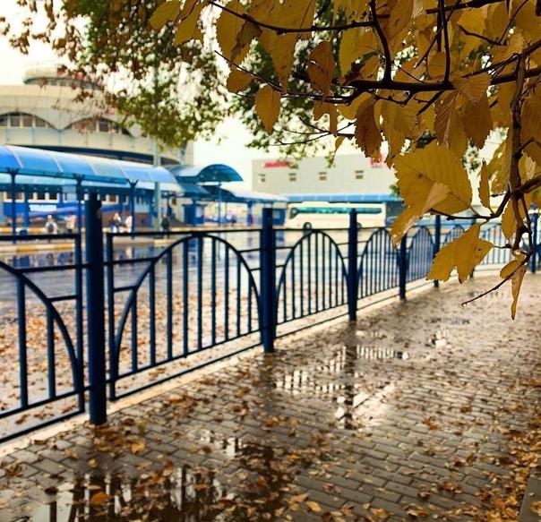 Осень - это когда перестают ходить автобусы до дач...