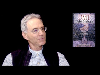 Researching Psychedelics and DMT with Rick Strassman