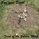 Trial of the Golden Witch - The Bunker
