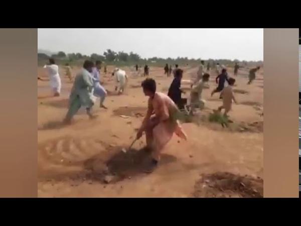Plantation Dispute in District Bara Khyber Pakhtunkhwa