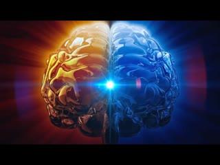 Черниговская Т.В. - Сознание, мозг, свобода воли ( Открытая лекция в САФУ  )