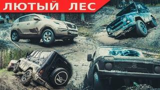Приключения в лесу. Бешеный Kia Sportage снова в деле. Jeep Grand Cherokee, Mitsubishi L200 и др