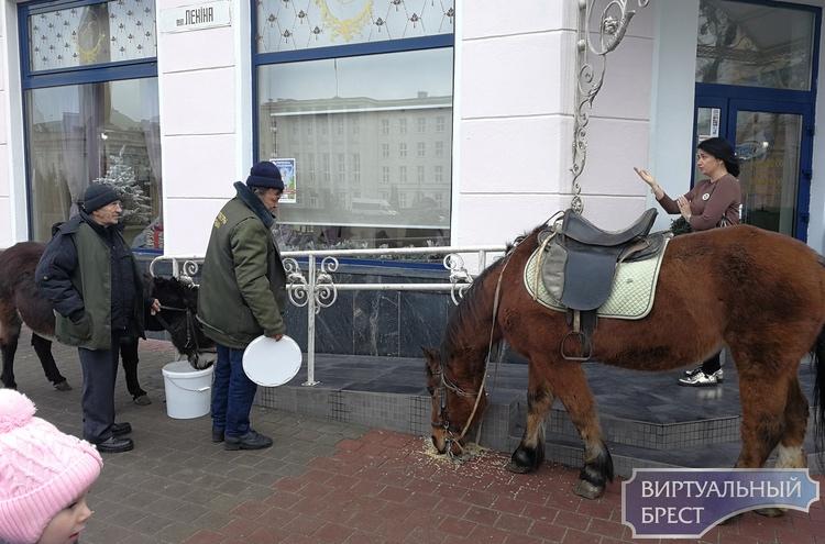 Стали ли сегодня убирать площадь Ленина от голубиного помёта? Мы узнали