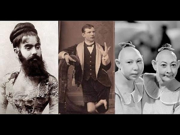 Цирк уродов истории и трагедии цирковых уродцев часть 4 Американская история ужасов