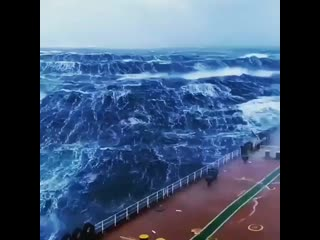 repost @marinerofficials2_k • • • • • • the ocean can be a scary place _ocean_ _scream_ al ( 640 x 640 ).mp4