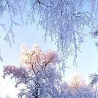 Фотография страницы Ульяны Гермин ВКонтакте