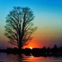Фотография страницы Арины Савиной ВКонтакте