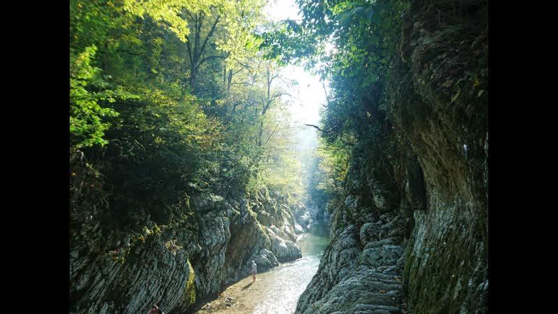 Тисо самшитовая роща с каньоном скалами и пещерой Сочи