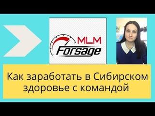 Как заработать в Сибирском здоровье   Команда МЛМ Форсаж и Siberian Wellness