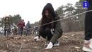 В память о защитниках Севастополя на Сапун-горе высадили 303 дерева