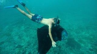 Нуса Пенида. Сколько стоит поплавать с морскими дьяволами? Как добраться с Бали на Пениду?