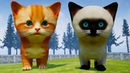 Симулятор Сумасшедшего Котенка 2 Кот Зомби, рыжий и сиамский Котик в Kitten Madness на пурумчата