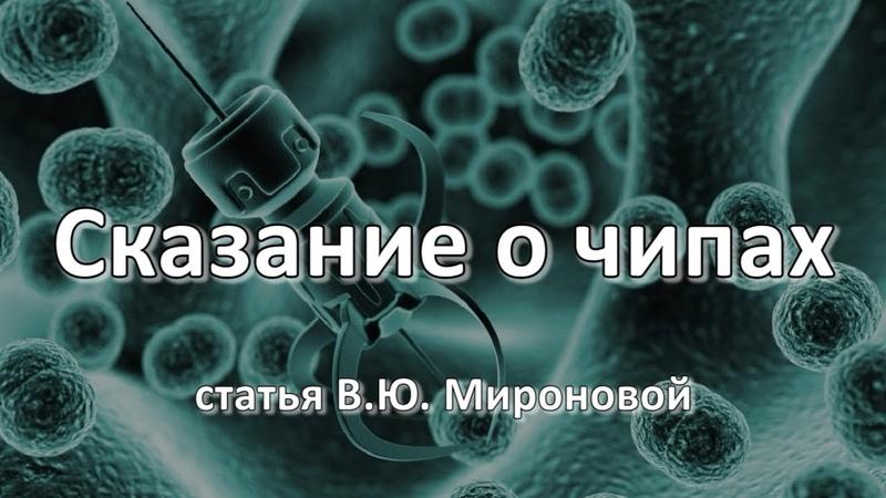 СКАЗАНИЕ О ЧИПАХ. Статья В.Ю.Мироновой от 04.05.2020