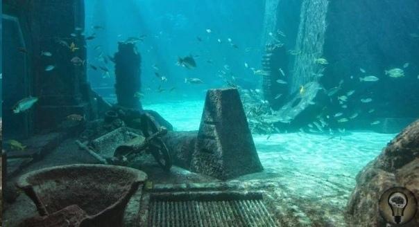 У берегов Сицилии обнаружен металл, который добывали в Атлантиде В подводном мире скрывается множество затонувших кораблей, и только малую часть из них удалось обнаружить и исследовать поисковым