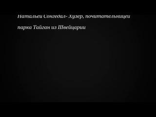 #СТОП-ЗУБКОВ УБИЙСТВО ДИКИХ ЖИВОТНЫХ В КРЫМУ