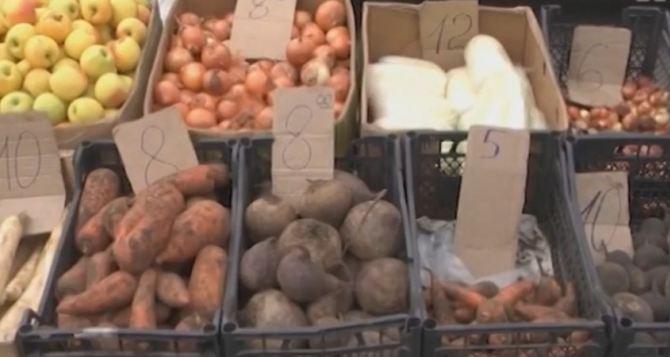 «Индекс борща»: в Луганской области цены на овощи упали