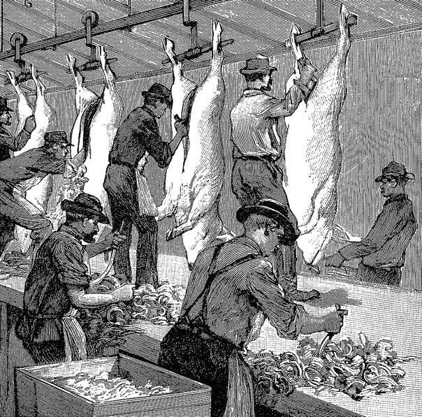 Что наша жизнь - еда. Пищевые отравления, инфекционные заболевания, просто подорванное здоровье вот цена, которую человечество во всей своей истории платит за стремление поесть повкуснее и